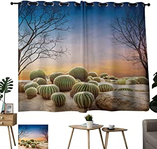 Warm Family Sheer Curtains Cactus,Cactus Balls with Spikes on a Montain Desert Sand Hot Dry Mexican Landscape Photo,Multicolor 84