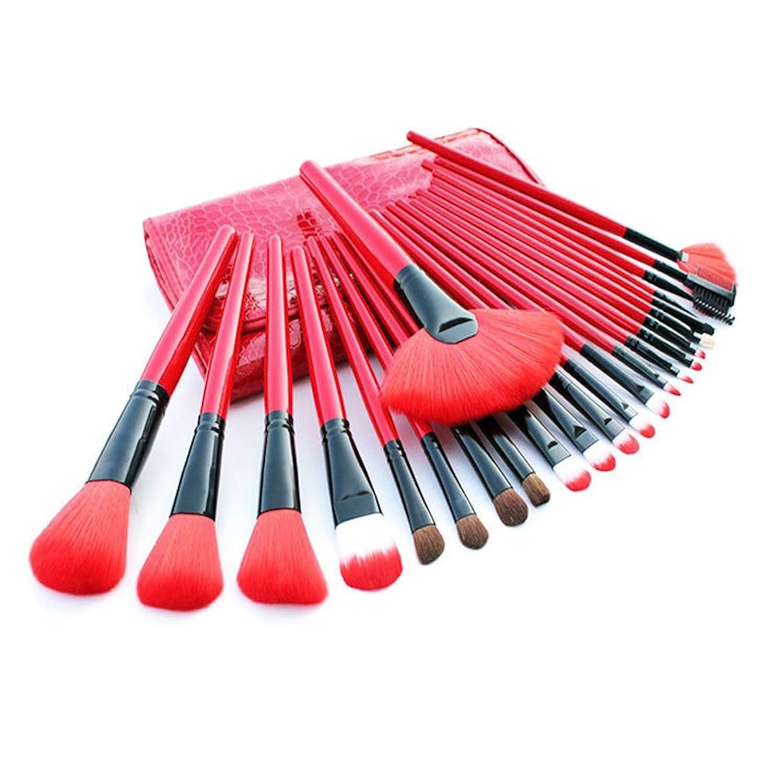 厳一緒ズームWSLCN メイク ブラシ 24本セット 化粧ブラシ センス 可愛い 化粧筆 メイクブラシセット セット コスメ ブラシ 超柔らかい 収納ケース付き (24本, ピンク)