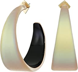 Wide Graduated Medium Hoop Lucite Earrings