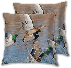 Throw Pillow Cover Set of 2 Australian Shepherd Soft Decorative Pillowcase Square Cushion Cover Case for Sofa, Couch, Bed,Chair and Car Home Decor Pillow Cases 18