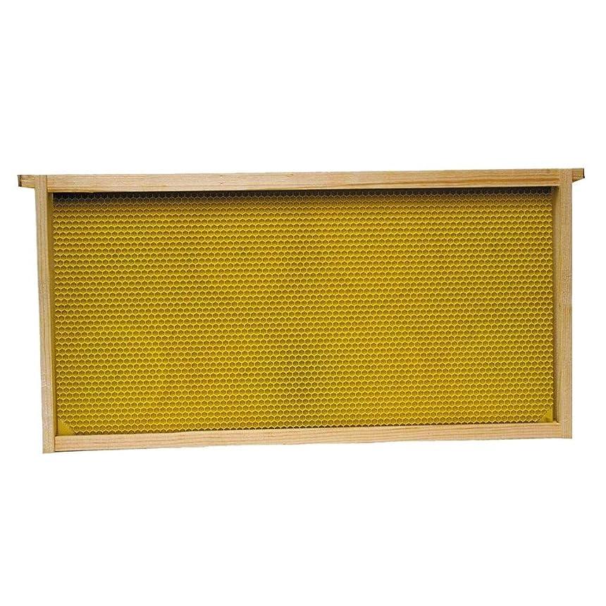 スラック国民スラックUamaze 養蜂家用具蜂のケージの群れのトラップ群発キャッチャー養蜂用資材黒、ワックスで塗られた自然な儀式細胞の基礎、9-1 / 8インチが付いている10のPCによって組み立てられるコマーシャルフレーム、蜂のメンテナンスコストを削減蜂の餌やり管理を簡素化科学的かつ効率的な健康養蜂