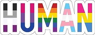 Sticker Sensation Human LGBT+ Gay Pride Sticker   Rainbow Lesbian Bisexual Pansexual Transgender Flag Vinyl Decal Sticker   Car/Truck Bumper Sticker Laptop Decal (6' x 2.25')
