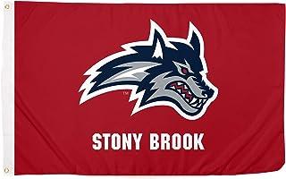 Desert Cactus Stony Brook University NCAA 100% Polyester Indoor Outdoor 3 feet x 5 feet Flag