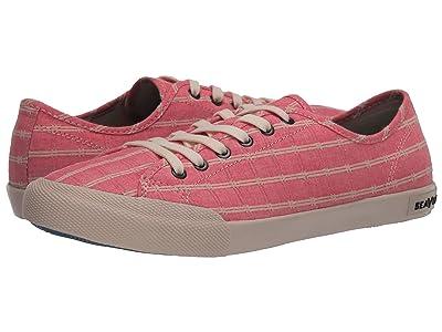 SeaVees Monterey Sneaker Chambray (Pink) Women