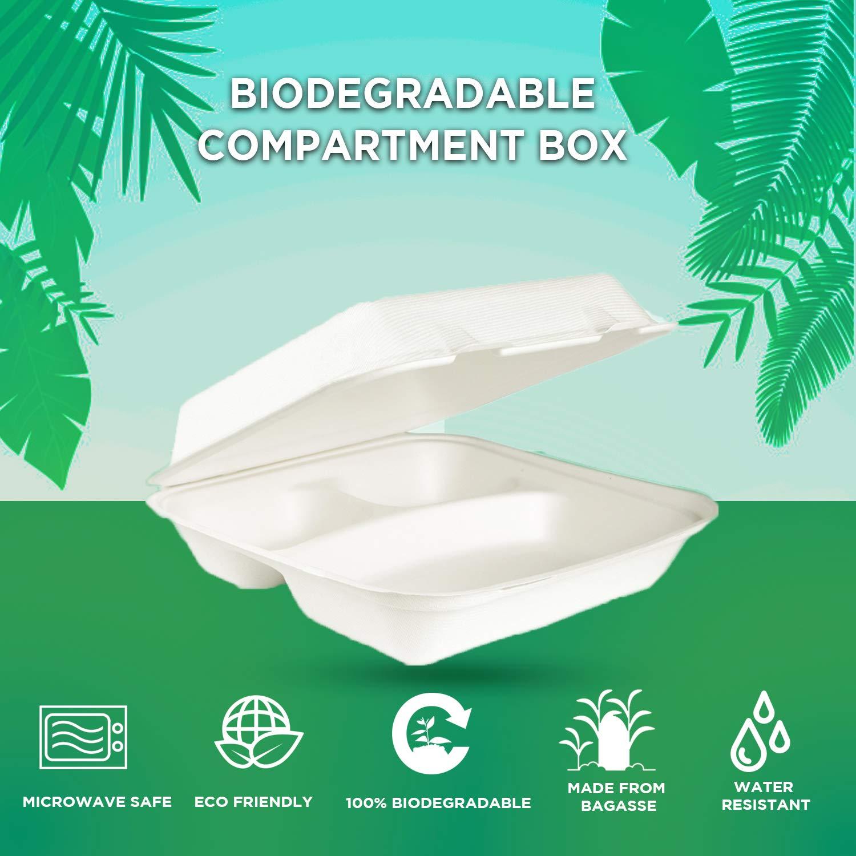 Ecodine - Caja cuadrada biodegradable y compostable para desechar ...
