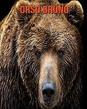Orso bruno: Immagini bellissime e fatti interessanti Libro per bambini sui Orso bruno (Italian Edition)