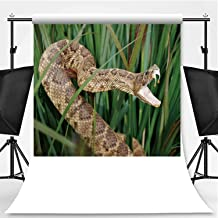 Snake in Long Grass with Mouth Open Showing Venom Photography Background,059279 for Photography,Pictorial Cloth:5x7ft