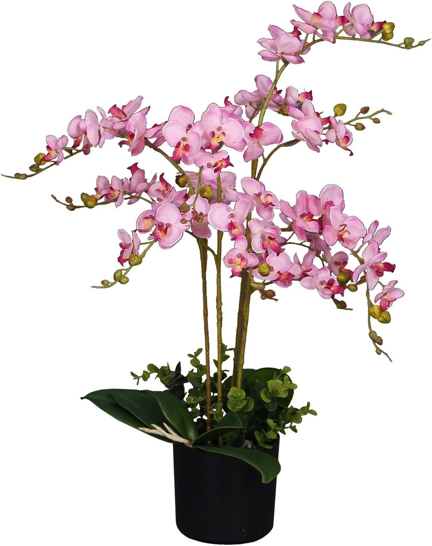 Dallas Mall AMERIQUE Unique and Recommendation Gorgeous Plan Orchid Phalaenopsis Artificial