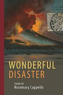 Wonderful Disaster