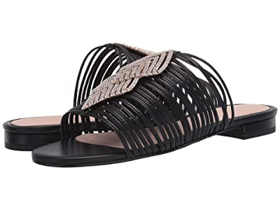Cecelia New York Darleen (Black/Silver Stone) Women