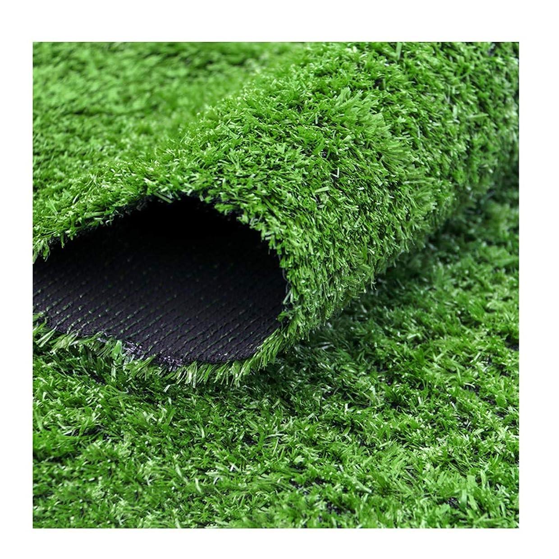 トースト承認満足XEWNEG 人工芝、15mm杭の高さ、屋外庭用緑高密度偽造芝生 (Size : 2×10m)