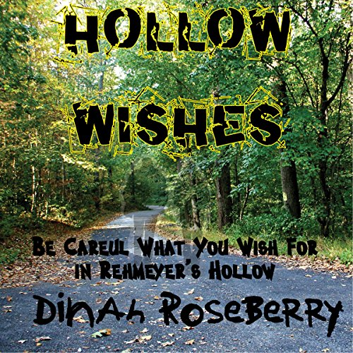 Hollow Wishes audiobook cover art
