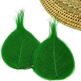 NAVA CHIANGMAI Skeleton Natural Ficus Religiosa Leaves Artificial Leaves Craft Card Scrapbooking DIY Embellishment Decoration Art Greeting Cards Wedding Gifts Seasonal Gift (Green)