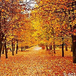 3x 150Vinyl Herbst Fall Szene gelb Baum Blätter Fotografie Studio Hintergrund