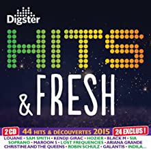 Hits & Fresh 2015 By Digster