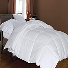 Blue Ridge Home Fashions Microfiber Down Alternative Comforter - Twin