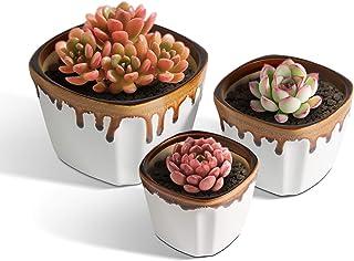 T4U 12CM 植木鉢 おしゃれ 多肉植物鉢 プランター サボテン鉢 陶器製 ホワイト