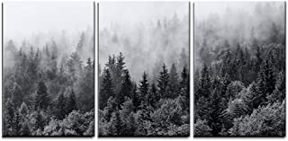 wall26 - 3 Piece Canvas Wall Art - Misty Forests of Evergreen Coniferous Trees in an Ethereal Landscape - Modern Home Decor Stretched and Framed Ready to Hang - 24