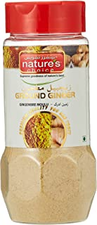Natures Choice Ginger Powder - 100 gm