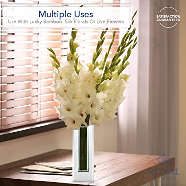 Flower Glass Vase Decorative Centerpiece for Home or Wedding by Royal Imports - Tall Rectangle Mirror Trim Plate Glass - (4.5