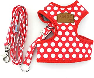 SMALLLEE_Lucky_Store New Soft Mesh Nylon Vest Pet Cat Small Medium Dog Harness Dog Leash Set