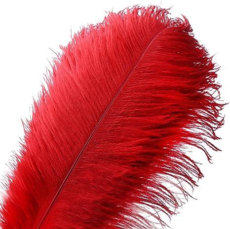 2 Pcs Ostrich Feather Plumes 23-30 Orange