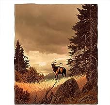 Best rocky mountain blanket Reviews
