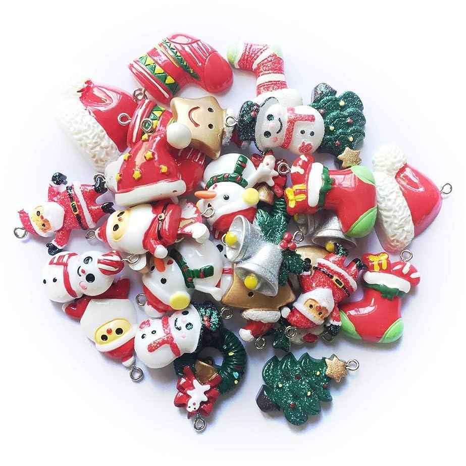 化学薬品責任者歴史Dyrenson クリスマス福袋 ランダム30個入り クリスマスのチャーム オーナメント サンタ?ツリー?ブーツ