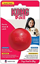 Best kong puppy ball with hole Reviews
