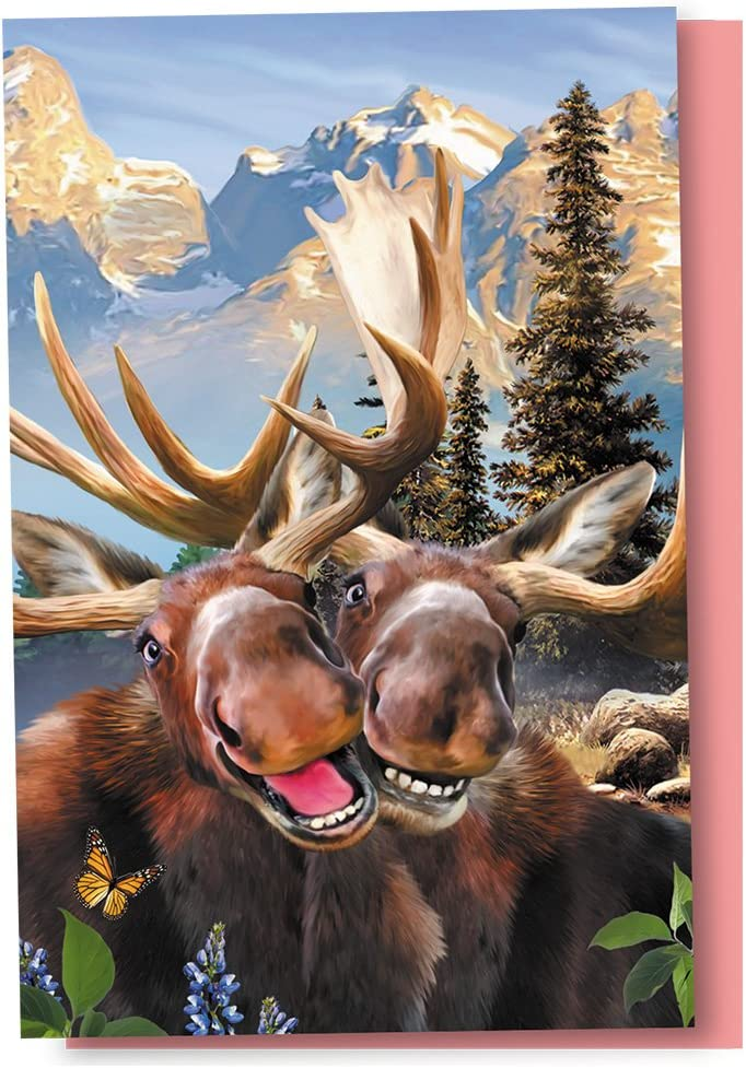 Tree-Free Greetings Mail order EcoNotes 12 Count Occas Selfie Moose All Now on sale Two
