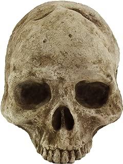 War Boy Skull Head Home and Garden Statues Figurine Garden Wall Plaque Cement Mad Max Halloween Sculpture