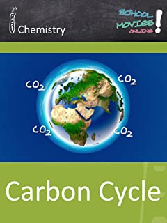 Carbon Cycle - School Movie on Chemistry
