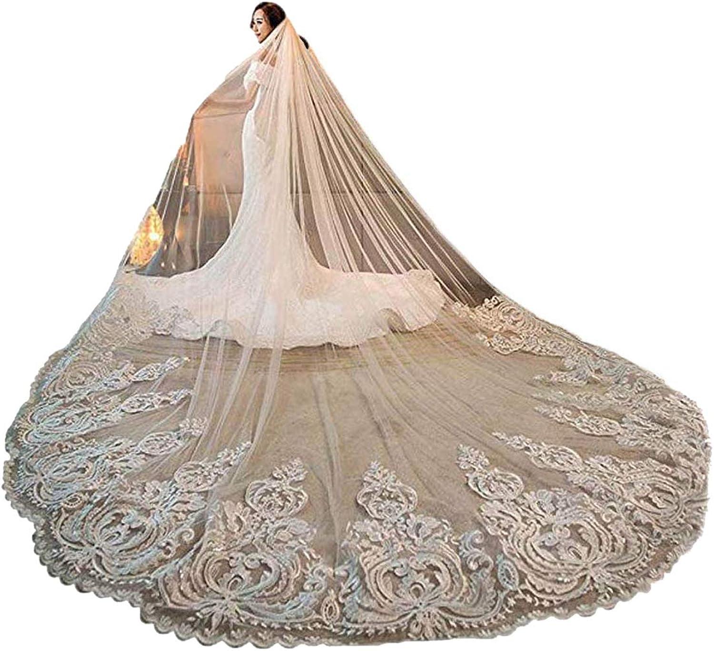 Women's 3M 3.5M 4M 1T Lace Applique Chapel Cathedral Bridal Veil With Free Comb