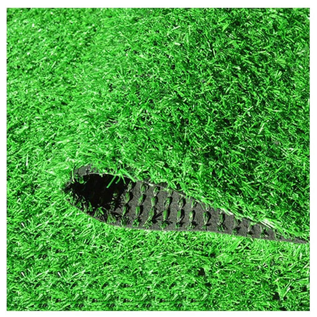 変化悔い改めるコールドYNGJUEN 人工芝30ミリメートル草の高さ、高密度休日の芝生、庭の芝生ペット犬のパッド芝生庭ペット屋外装飾 (Size : 2x7m)