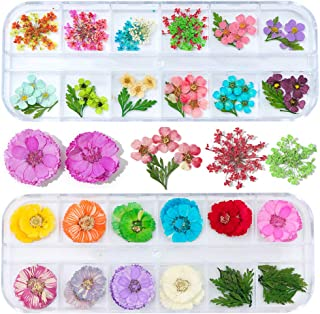 3D Dry Flowers Summer Nail Flowers for Nails Art Beauty Supply Mixed Designs Real Nail Art Flowers for Manicure Tips Fingernails and Toenails Decorations Starry Five Leaf Dried Flower Sticker Decals