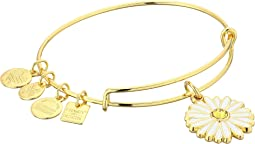 Alex and Ani Charity By Design Daisy Bangle