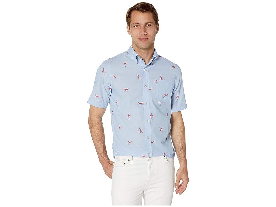 CHAPS Fashion-Short Sleeve-Sport Shirt (Blue) Men