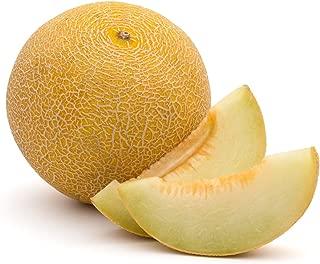 Cantaloupe Masala - one of the tastiest varieties available on the market - seeds