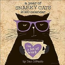 A Year of Snarky Cats 2020 Wall Calendar