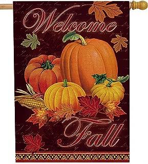 Dyrenson Welcome Fall 28 x 40 House Flag Farm Double Sided, Autumn Rustic Harvest Pumpkin Burlap Garden Yard Decoration, Maple Leaf Corn Vintage Seasonal Outdoor Décor Decorative Large Flag