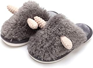 Girls Cute Fluffy House Slipper, Little Kid's Unisex Memory Foam Fuzzy Indoor Outdoor Slipper for Children