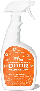 ANGRY ORANGE Enzyme Stain Cleaner & Pet Odor Eliminator, Dog & Cat Urine Destroyer for Floors & Carpet, 32oz