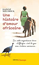 Une histoire d'amour africaine (Libres champs) (French Edition)