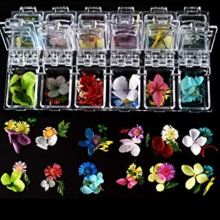editTime 36 PCS Nail Dried Flowers Daisy Hydrangea Macrophylla and Leaf for Manicure Natural Real Dry Flower Kit 3D Nail Art Sticker Flower Beauty Nail Stickers