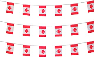 party decorations canada