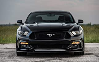 Best ford mustang hpe800 Reviews