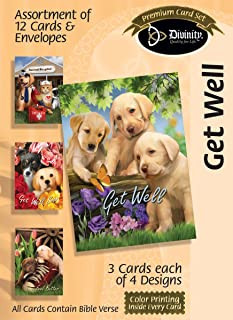 Get Well Assortment of Greeting Cards by Divinity