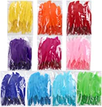 Best red and blue feathers Reviews