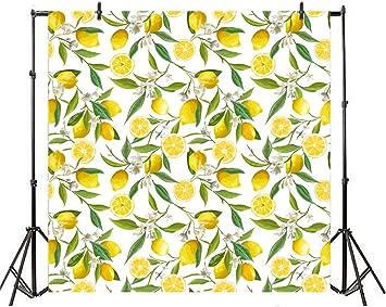 6x6FT Vinyl Photo Backdrops,Modern,Fresh Lemons Striped Photo Background for Photo Booth Studio Props