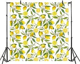 Best sweet lemon drop photography Reviews
